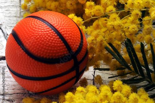 Basket ft81043106 Basket-ball Pallacanestro Basketball Košarka