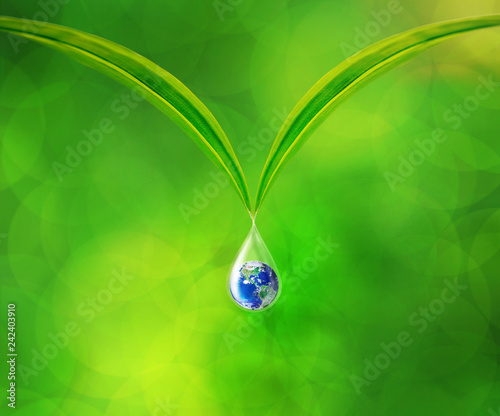 Leinwandbild Motiv Earth in water drop reflection under green leaf, Together We Can Save Our World Concept, Elements of this image furnished by NASA
