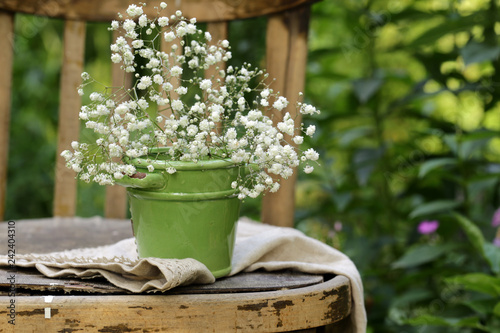 white flowers in a vase, a rustic still life