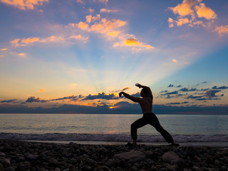 silhouette of a martial artist training alone on the sea pier, practising his moves on sunset. Active life and healthcare concept