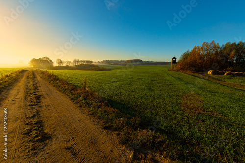 The morning field. Fog above the ground. Beautiful landscape.