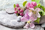 Still life with delicate pastel pink apple blossom