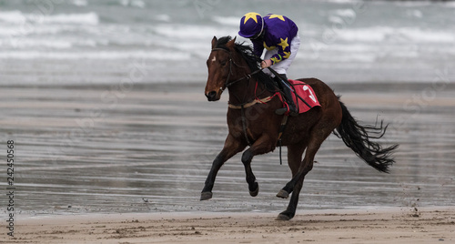 Galloping race horse and jockey on wet sand beach - 242450568