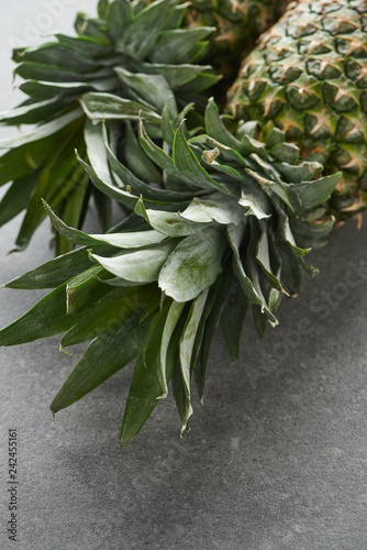 close up of green pineapples on grey background