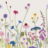 Seamless floral border. Summer flowers. Vector illustration. Colorful
