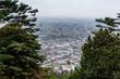 Bogota view - 242462760
