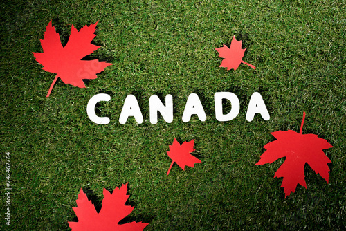 top view of word 'Canada' with maple leaves on green grass background