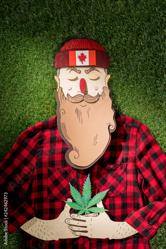 cardboard man in plaid shirt holding cannabis on green grass background, marijuana legalization concept