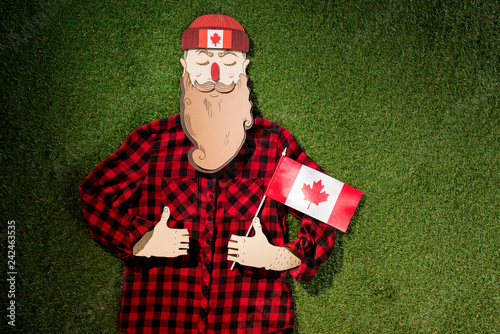 cardboard man in plaid shirt holding canadian flag and showing thumbs up signs on green grass background
