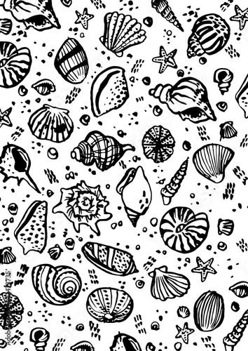 freehand draw so many seashells with black brush freestyle - 242473735