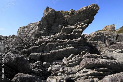 室戸岬のタービダイト層