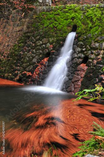 Waterfall long exposure - 242495597