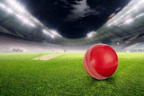 Fototapeta Sport - Cricket stadium with ball in lights and flashes 3d render © Zubair