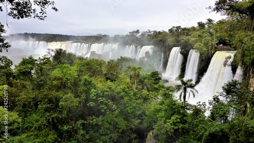 Waterfalls of Iguacu in Brazil and Argentina  - 242520798