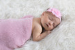 Newborn baby in pink swaddle - 242521154