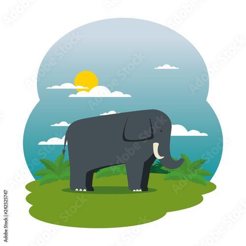 cute elephant in the field scene