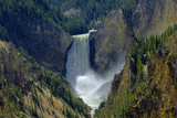 Grand Canyon of the Yelowstone National Park, Yellowstone National Park is UNESCO World Heritage Site