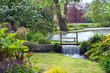 Charming landscaped garden with a small waterfall by a pond, surrounded by flowers, shrubs, trees in bloom, on a summer day . - 242551102