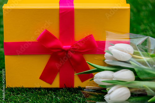Foto Murales Beautiful yellow gift box with pink bow and tulips on green grass lawn