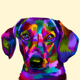colorful daschund on pop art