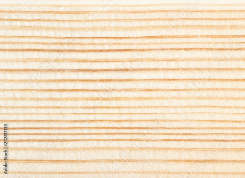 Wood texture close-up, abstract natural background