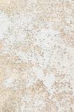 古いコンクリート壁 - 242624137