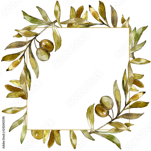 Green olives watercolor background illustration set. Watercolour drawing green leaf. Frame border ornament square.