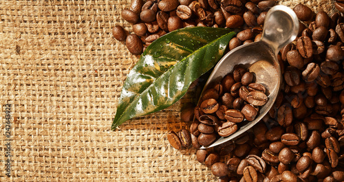 Roasted fresh coffee beans on a hessian background - 242643922