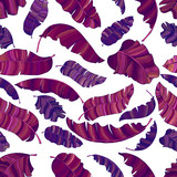 A seamless pattern of exotic, vibrant purple leaves of a banana. - 242652993