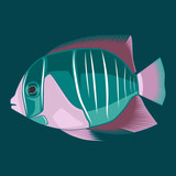 Color vector image of fish on blue background.