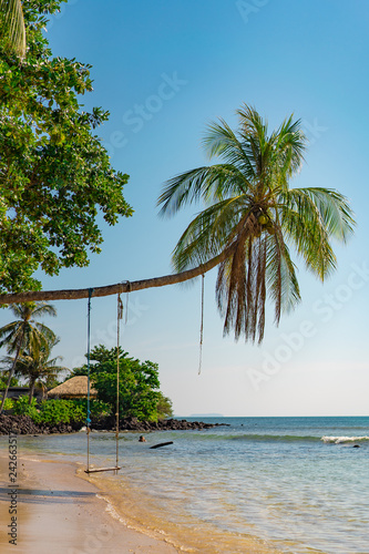 Swing on the Sloping Palm Tree on the Beautiful Tropical Island Beach.