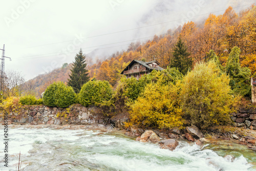 Lys river in a forest in the valley of Gressoney near Monte Rosa during autumn