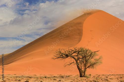 Sossusvlei salt pan with high red sand dunes in Namib desert, Namibia, Africa. - 242666735