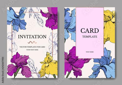 Vector Iris flower. Engraved ink art. Wedding background border. Thank you, rsvp, invitation elegant card graphic set.