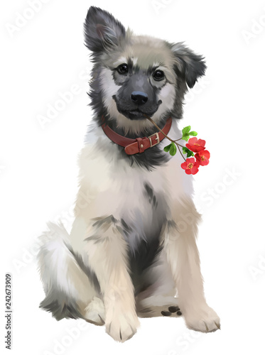 A puppy and a branch with red flowers