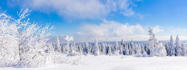 Winterlandschaft, Schwarzwald, Schwarzwaldhochstrasse  © pure-life-pictures