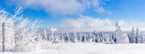 Leinwandbild Motiv Winterlandschaft, Schwarzwald, Schwarzwaldhochstrasse