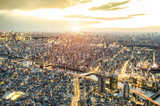 Aerial view of Tokyo skyline from above during sunset and blue hour - Japanese world famous capital with spectacular nightscape panorama - Violet dramatic filter on vivid night city lights