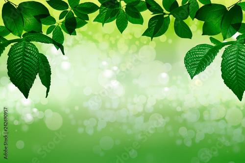 fondo verde abstracto con marco de hojas