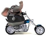 Fun elephant - 3D Illustration - 242695576