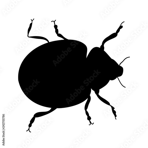 insect beetle silhouette