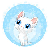 kitten blue background winter