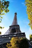 Fototapeta Wieża Eiffla - Eiffel Tower © zafer