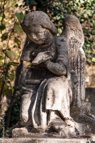 Engel Friedhof - 242742383
