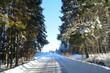 Sunny winter in Russia