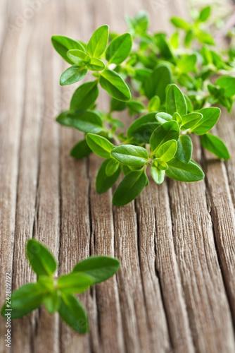 Leinwanddruck Bild fresh thyme herb on the wooden table