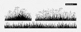 Meadow grass. - 242832795