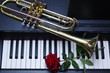 Trumpet and red roses on the piano keyboard.