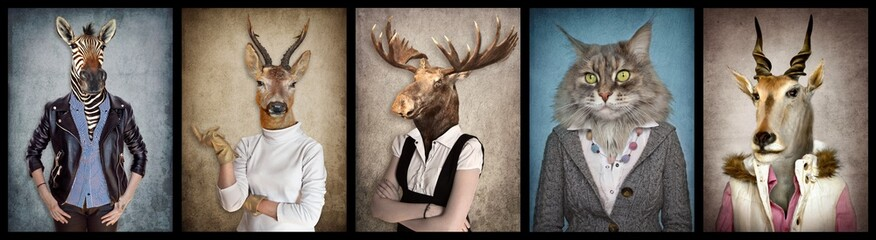 Animals in clothes. People with heads of animals. Concept graphic, photo manipulation for cover, advertising, prints on clothing and other. Zebra, deer, moose, cat, goat.