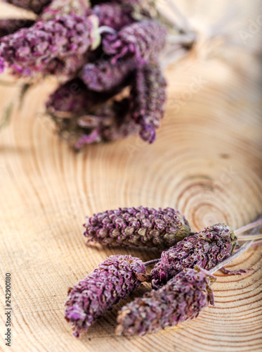Bunch of Lavandula Stoechas flowers  on wooden background - 242900180